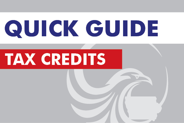 Tax Credit and Incentives Policy Report