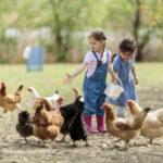 ESA: A Solution to Help Rural Iowans